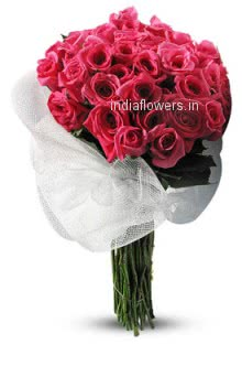 Hi Quality Bunch of 30 Pink Roses for your Love.