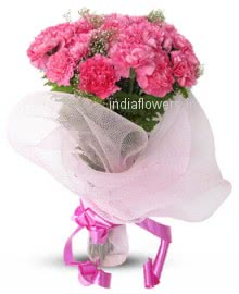 Stylish Pink Carnations