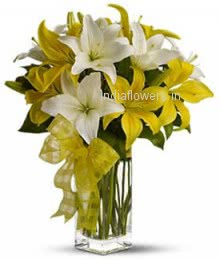 Yellow and White Lilies
