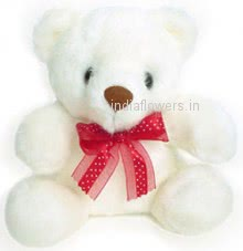 12 Inch Soft Teddy