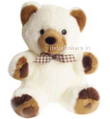 15 Inch Soft Teddy