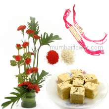 Rakhi Package with Bunch of 6 Red Carnation,6 Red roses in a glass vase, 500gm Soan Papdi with Two Rakhi & Roli Chawal. Best Gift for Raksha Bandhan