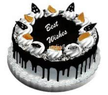 2 Kg. Big size Choco chip Cake. Special mouth watering chocochip cake  favorite of kids.