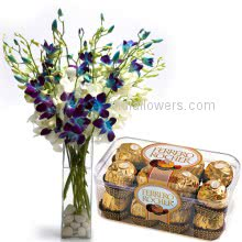 Blue Orchids n Chocolates
