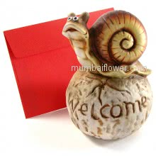 Welcome Snail