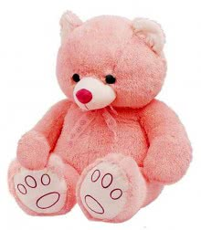 Pink Color Teddy Size 24 Inch approx.