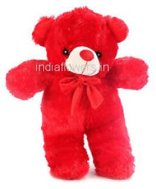 Red Teddy 12 Inch