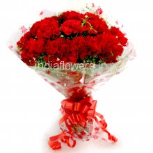 Bunch of 15 Red Carnation Plastic Cellophane packing