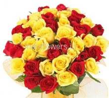 45 Red and Yellow Roses
