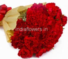 20 Stems Red Carnations