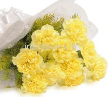10pc Yellow Carnations