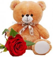 1pc Red Rose and Teddy