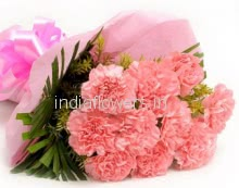 Beautiful Bunch of 10 Pink Carnation with Paper Packing and ribbons