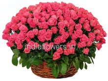 Basket of 75 Pink Roses nicely decorated with greens
