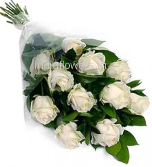 Bunch of 12 White Roses with Plastic Cellophane packing