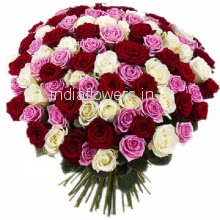 Bunch of 100 Mix Red, Pink and White Roses nicely decorated with fillers and Paper Packing and ribbons