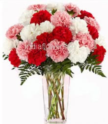 25 Mixed Carnations