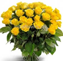 Bunch of 35 Yellow Roses