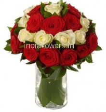 Glass Vase with 15 Red and 15 White Roses nicely decorated with fillers