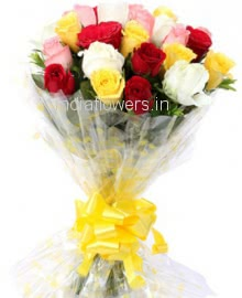 25 Mixed Color Roses
