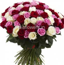 60 Red Pink and White Roses