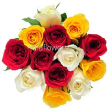 12 Mixed Color Roses