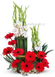 Refreshing Red Gerbera and Gladioli Arrangment nicely decorated