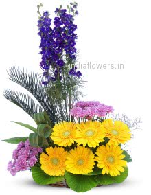Mixed Flowers Exotic Arrangement of Gerbera and Carnation and purple orchids
