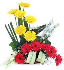 Yellow and Red Gerberas Flower Arrangement nicely decorated with fillers and greens