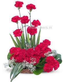 Beautiful Flowers Arrangement of Red Carnation nicely decorated with fillers and greens