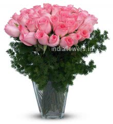 40 Stems of Valentine Pink Roses in a Glass Vase