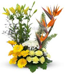 <b style=color:red >Not in Stock</b> Exotic Mixed Flowers Arrangement with BOP Gerbera Lilies and Carnations. Please note we may substitute type of flowers / color of flowers in case of unavailability.