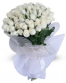 Purity White Roses