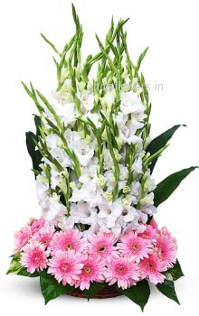Lovely Arrangement of Pink Gerberas and Gladioli nicely decorated with Fillers and Greens