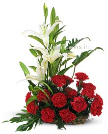 Arrangement of 20 Red Carnation and 3 White Lilies nicely decorated with Fillers and Greens. Please note we may substitute type of flowers / color of flowers in case of unavailability.