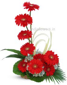 Awesome Red Flowers
