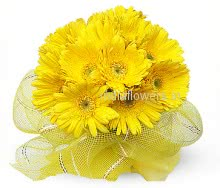 Flower Bunch of 15 Morning Yellow Gerbera nicely wrapped