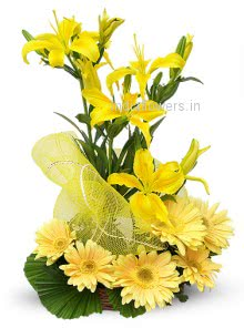 Bright Sunny Yellow Lilies and Gerbera nicely decorated  , special deliveries to Mumbai, New Delhi, Patna, Gurgaon, Ghaziabad