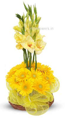 Arrangement of Yellow Gerbera and  Gladioli nicely decorated with fillers and greens. Please note we may substitute type of flowers / color of flowers in case of unavailability.