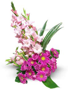 <b style=color:red > Not in Stock</b> Bouquet of 10 White Gladioli and 15 Dark Pink Gerberase nicely decorated with fillers and greens. Please note we may substitute type of flowers / color of flowers in case of unavailability.