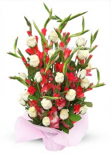 Bunch of 10 Gladioli and 20 Roses nicely decorated with Fillers and Ribbons