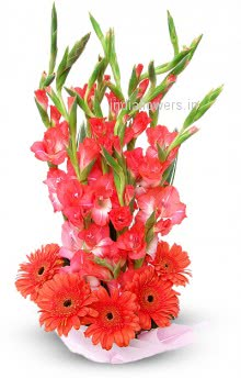 <b style=color:red > Not in Stock</b> Arrangment of Red Gerberas and Glads. Please note we may substitute type of flowers / color of flowers in case of unavailability.
