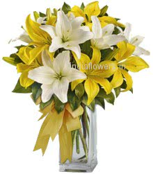 Awesome Lilies